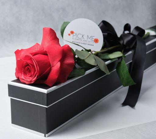 Single Long Stem Roses